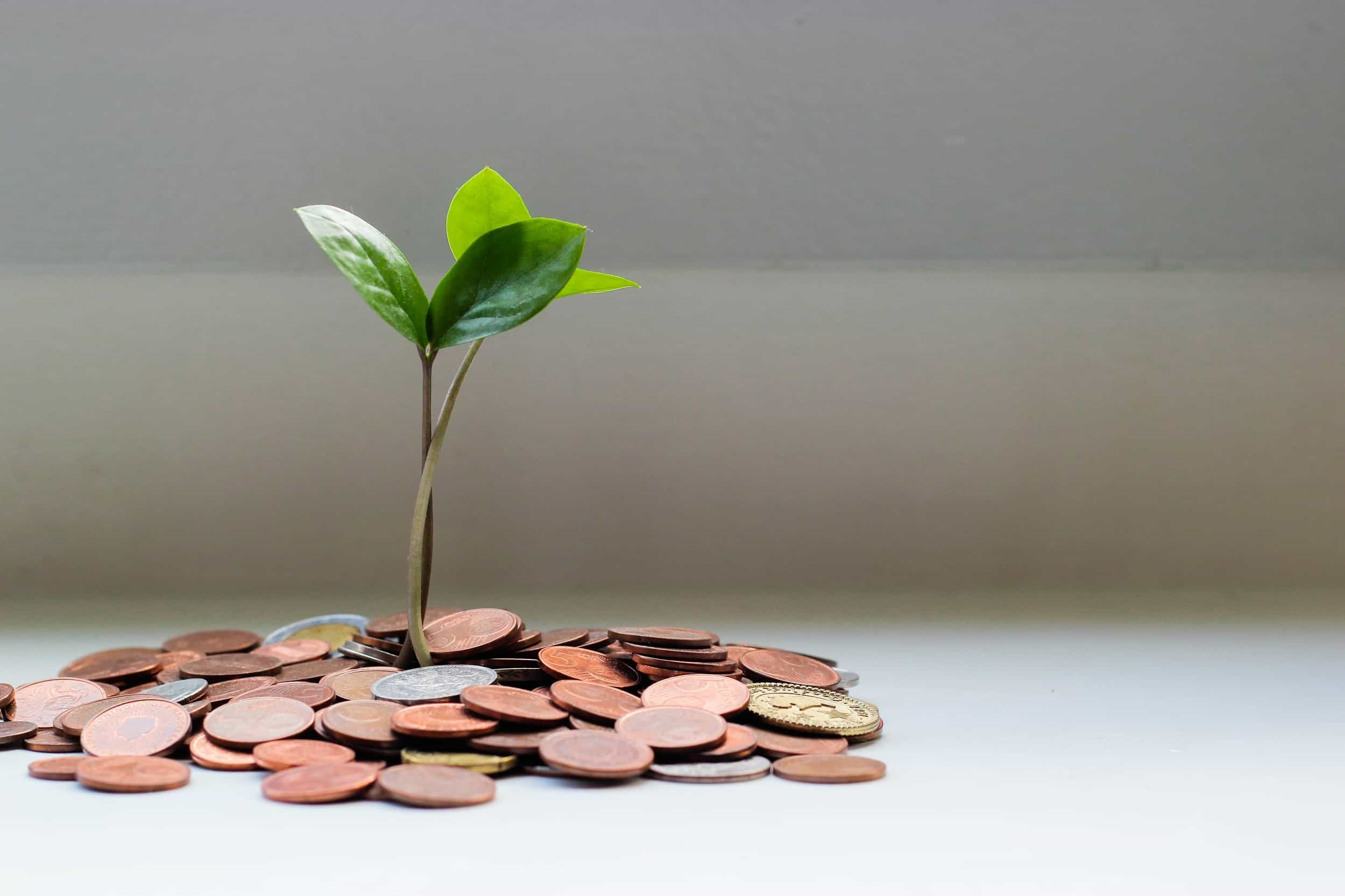 How a Financial Planner Can Assist You to Achieve Your Financial Goals
